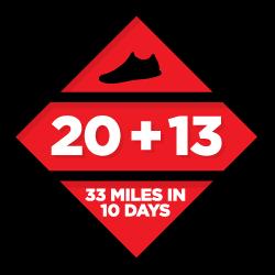 20 + 13 logo