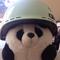 Pandacanride H.