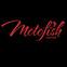 Motofish Racing