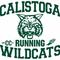 Calistoga Running Wildcats