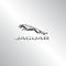Harwoods Jaguar