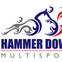 Hammer Down Multisport