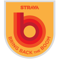 Bring Back the Boom logo