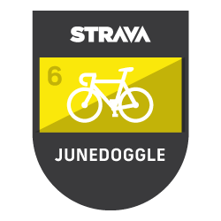 The Junedoggle logo
