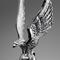 The Silver Eagle !.