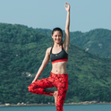 Johanna Chan