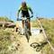 Dininho Eleven Bikes B.