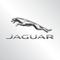 Jaguar R.