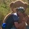 Bear B.