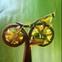 Bike Medic S.