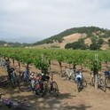 Napa Group Ride