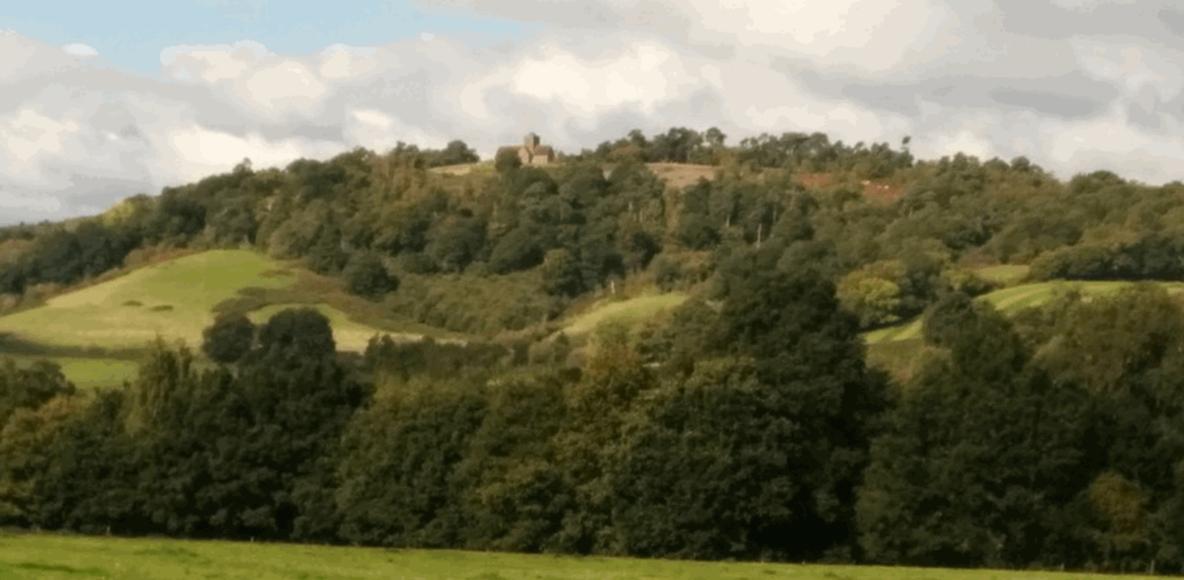 Surrey Hills Trail Blazers