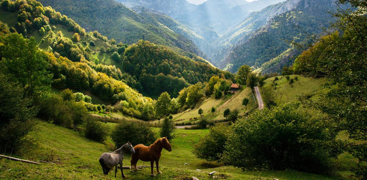 Asturian Running