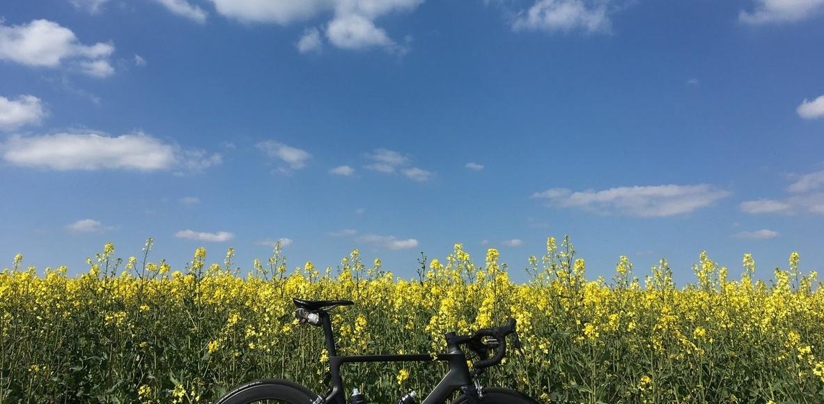 Cycling@Allianz