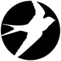 Oiselle
