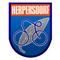 RC Herpersdorf 1919
