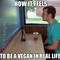 HCLF Vegans