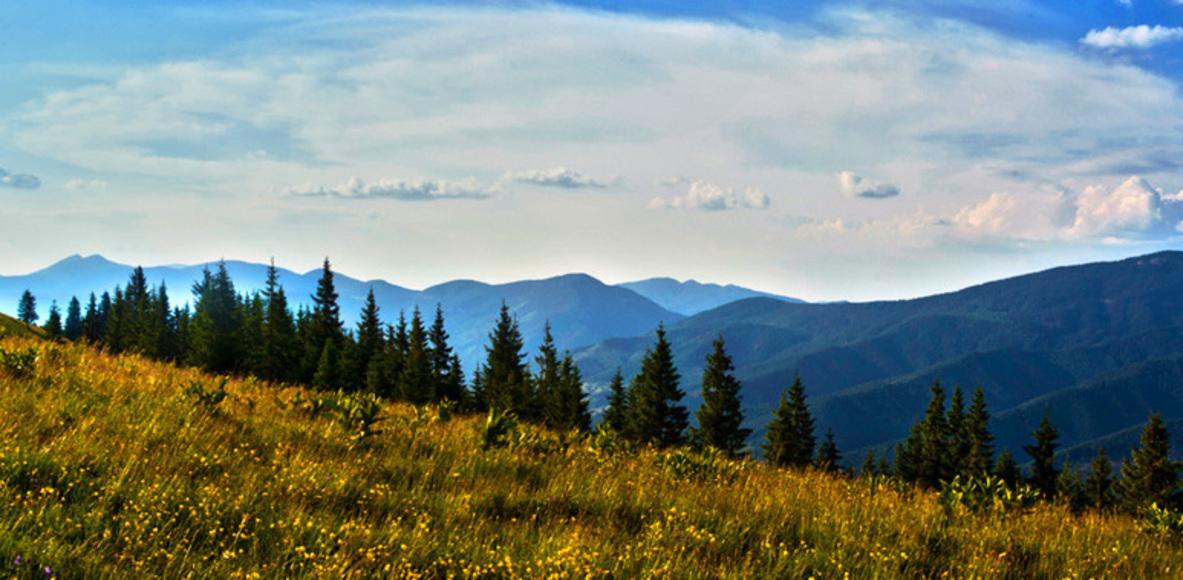 Carpathians (Карпатці)