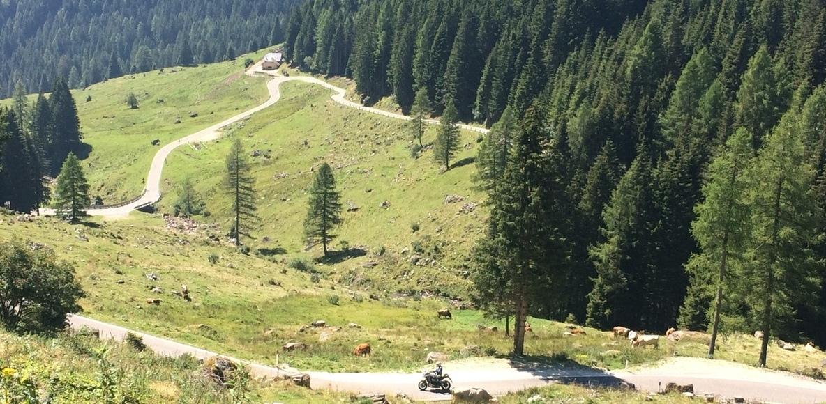 Trentino Cycling ®