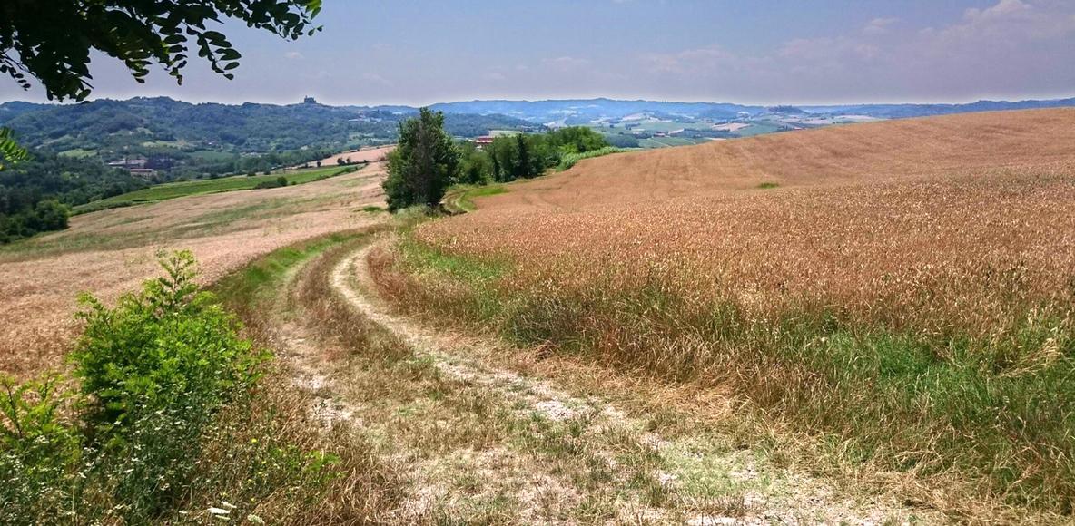 Monferrato a Pedali