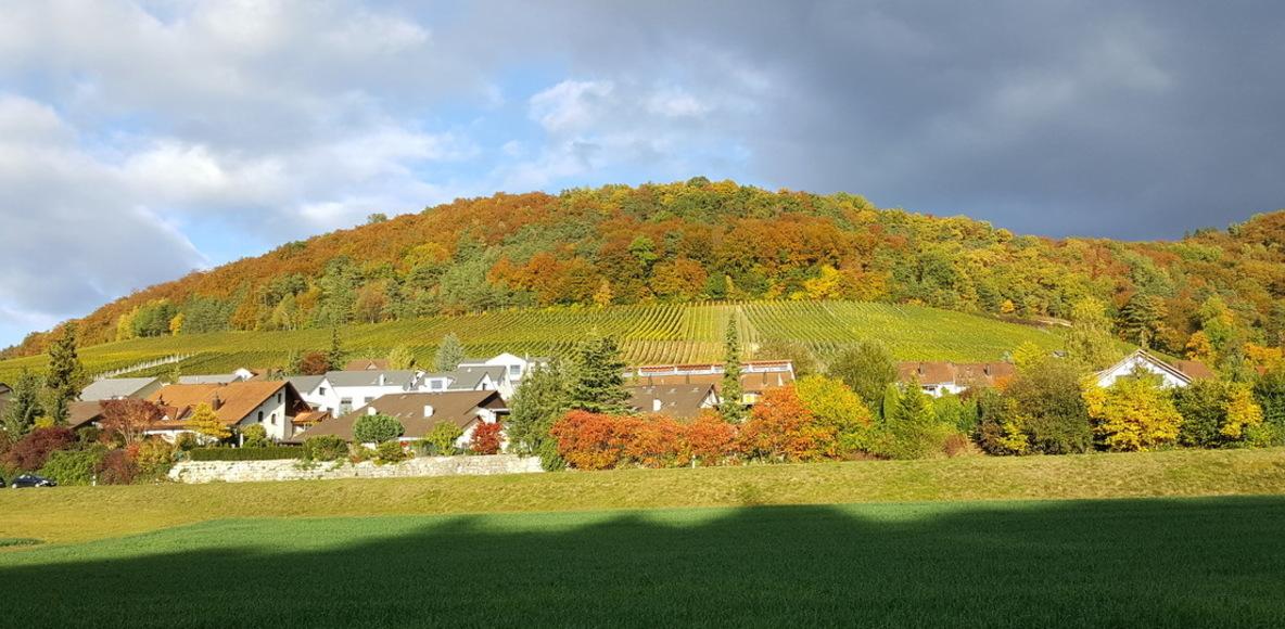 Cycling Aargau