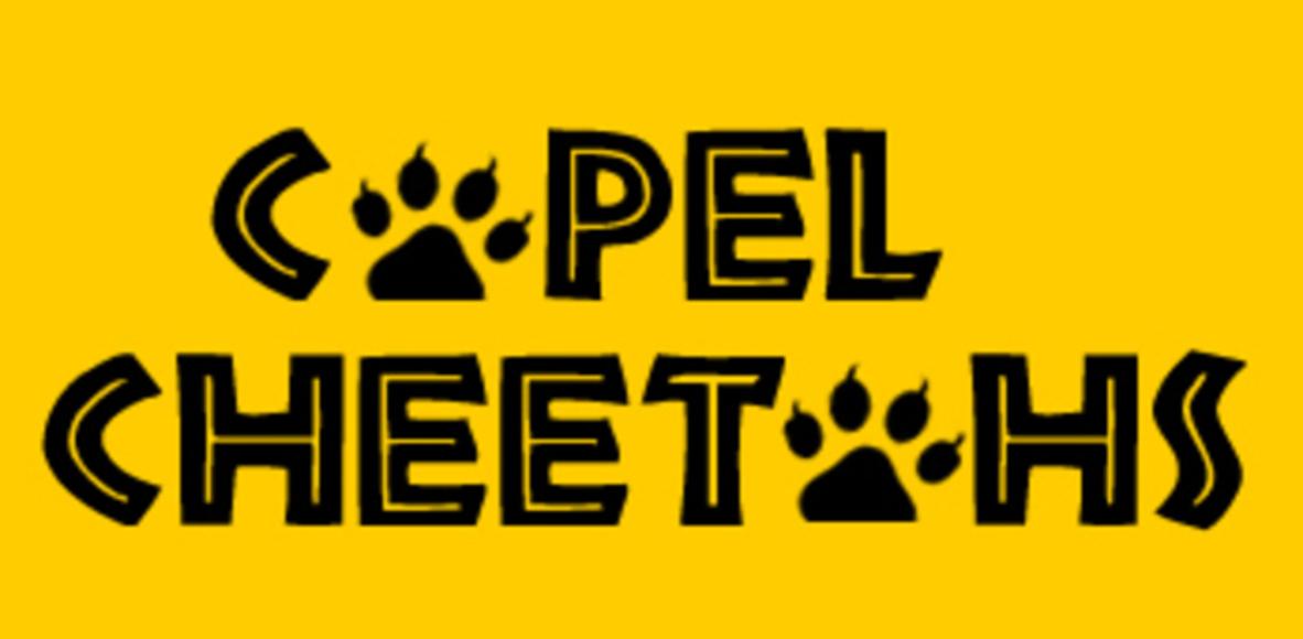 Capel Cheetahs
