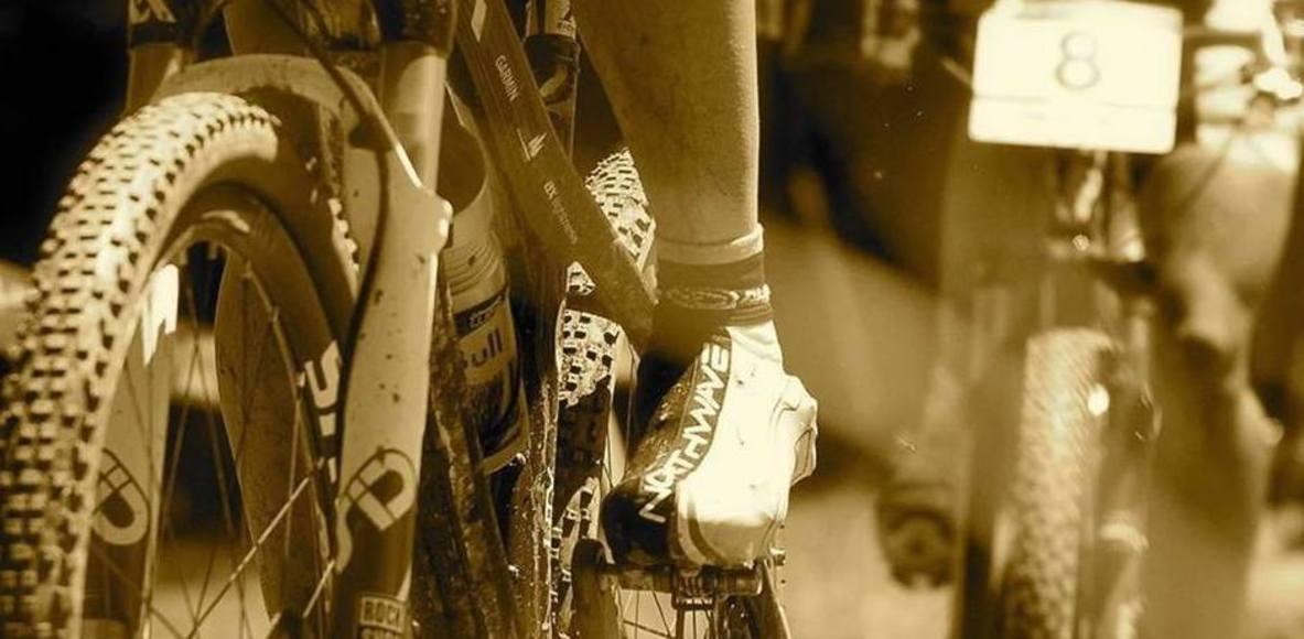 Bike Tribe