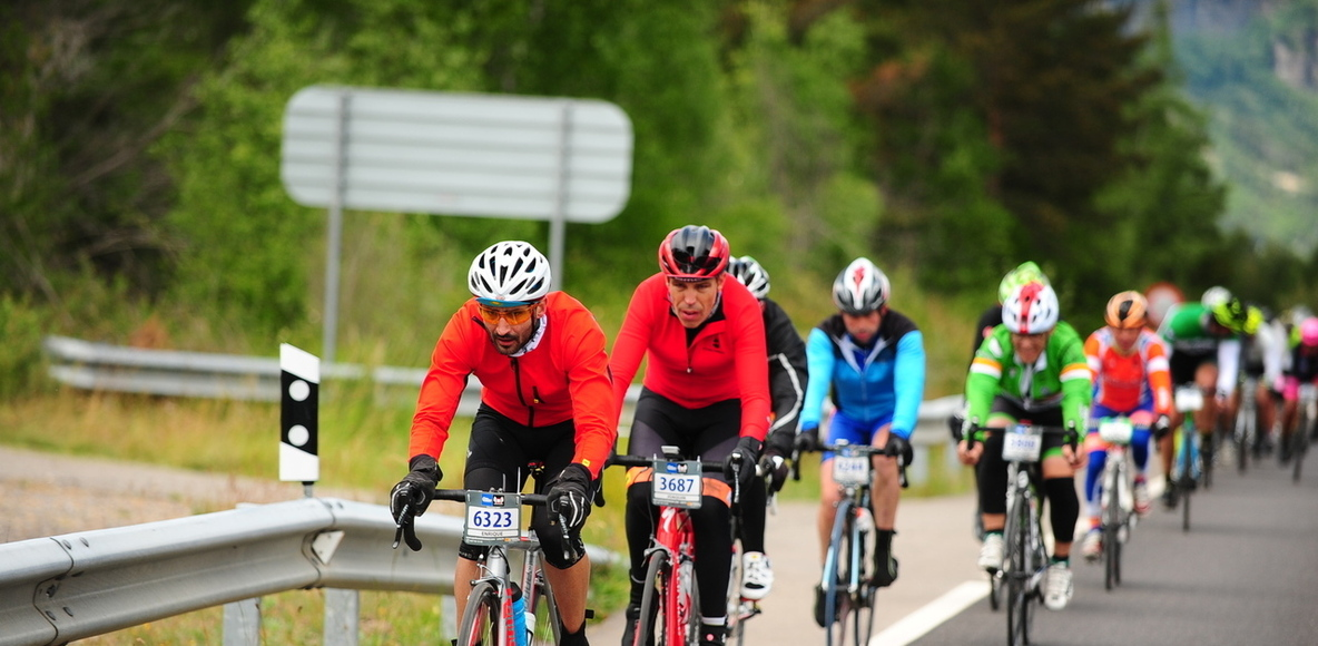 DAIMUS CYCLING TEAM