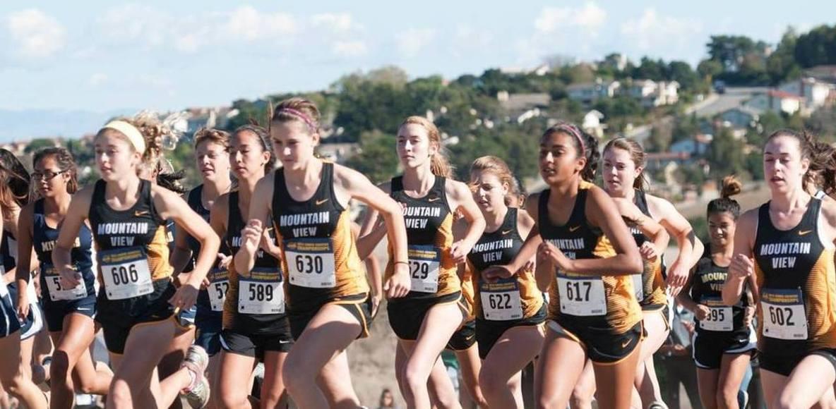 Mountain View High School Distance Team