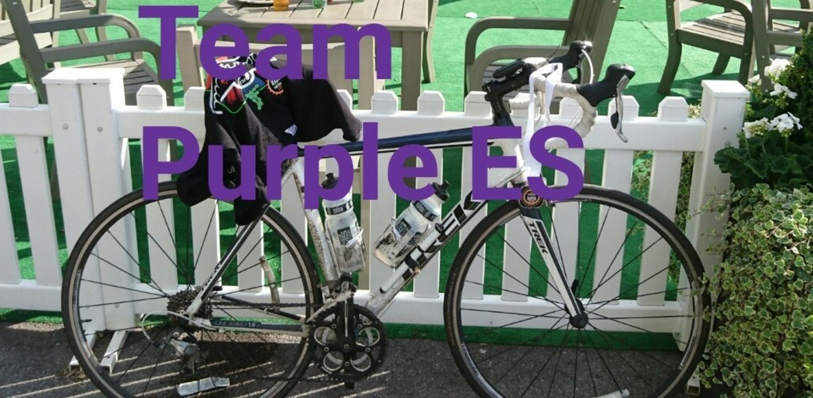 Team Purple(ES)