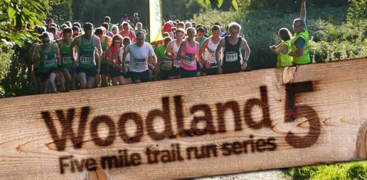 Woodland5 2017