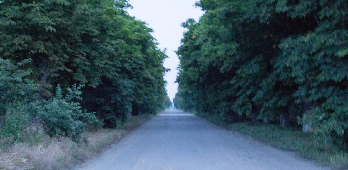 Odessa Running