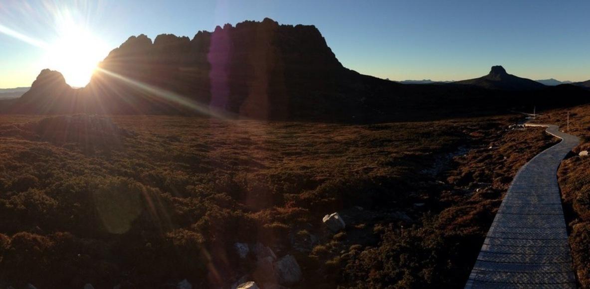Tasmanian Trail Runners