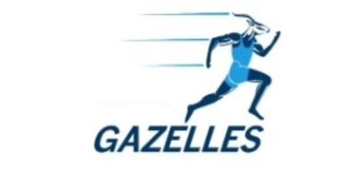 Ravenshead Gazelles