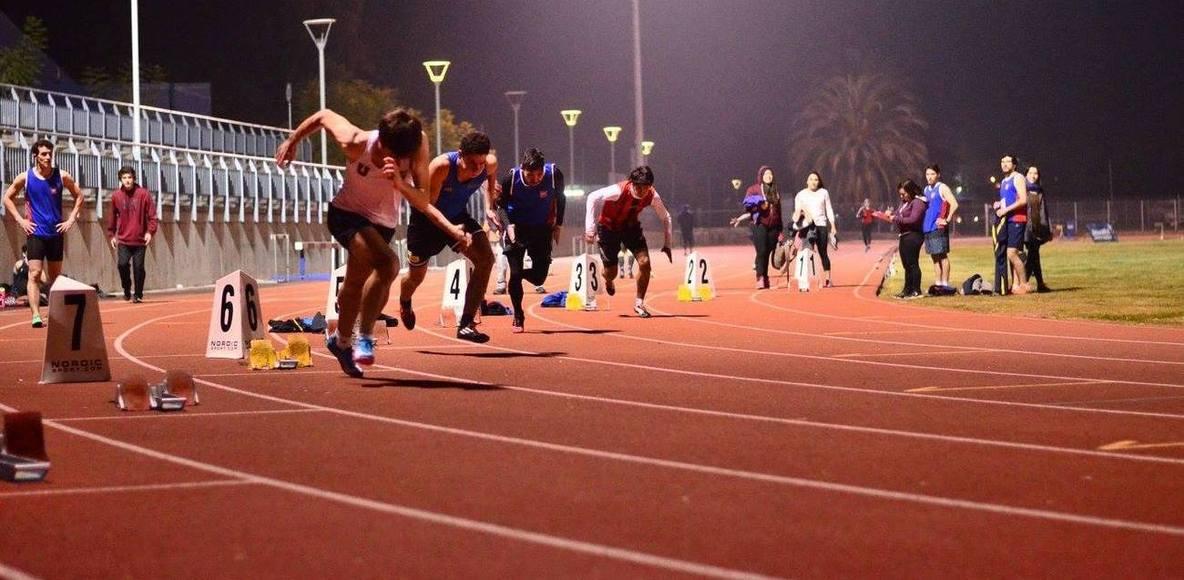 Beaucheff Runners