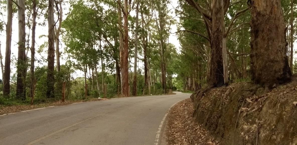 Morato Bikers