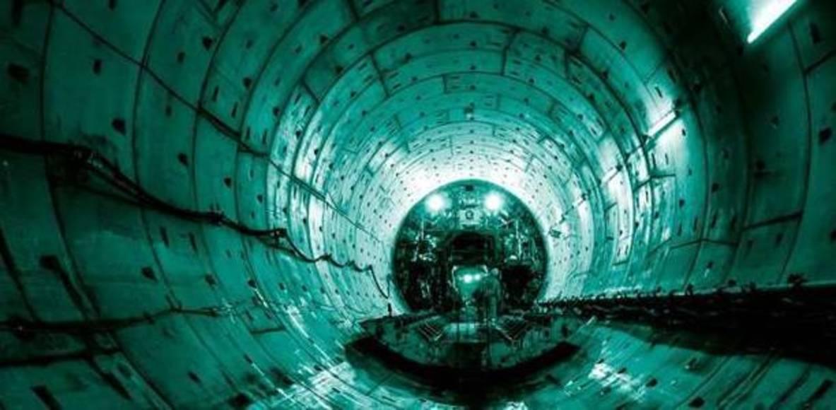 Thames Tideway Tunnels Termites