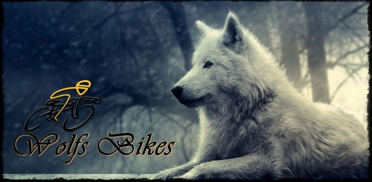Wolves Bikes
