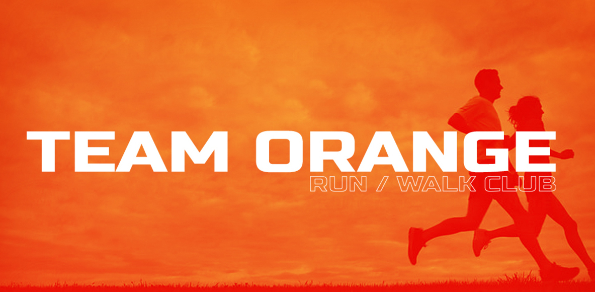 AML Team Orange