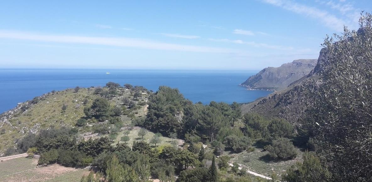 Mallorca Flitzer
