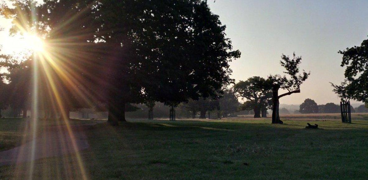 Tuesday Morning Park Club