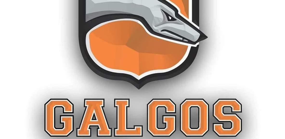 Team Galgos