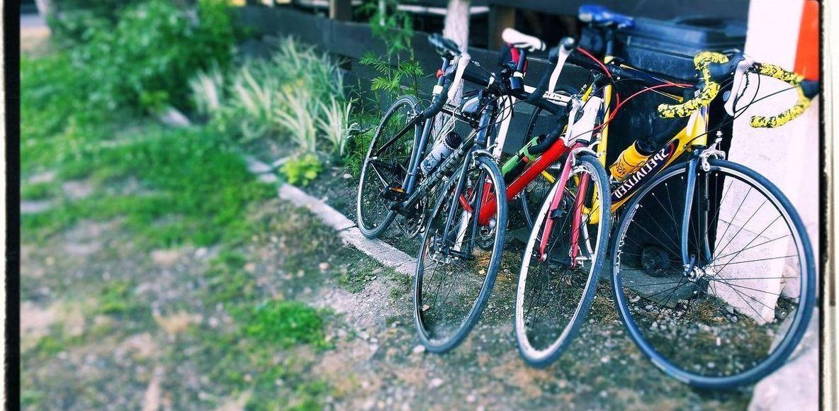123 cycling team