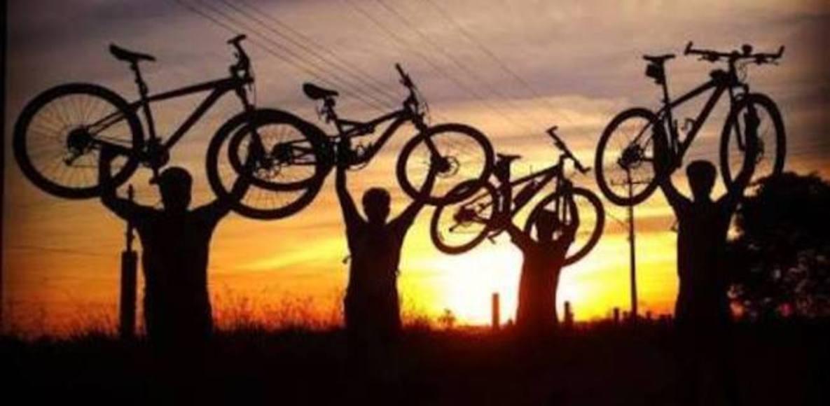 Bike Net