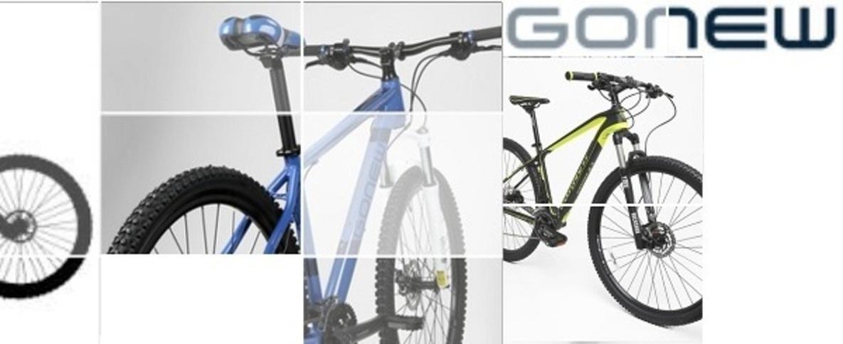 GoNew Bikes BRASIL