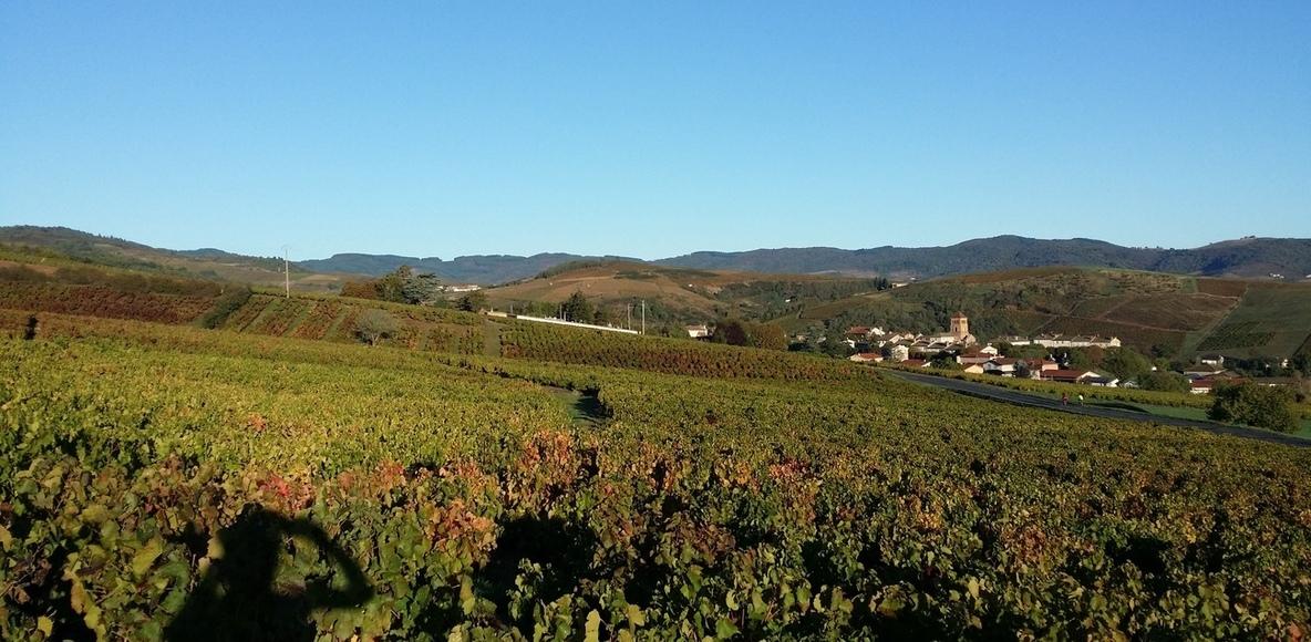 Les Routes Du Beaujolais