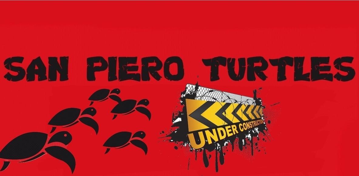 San Piero Turtles