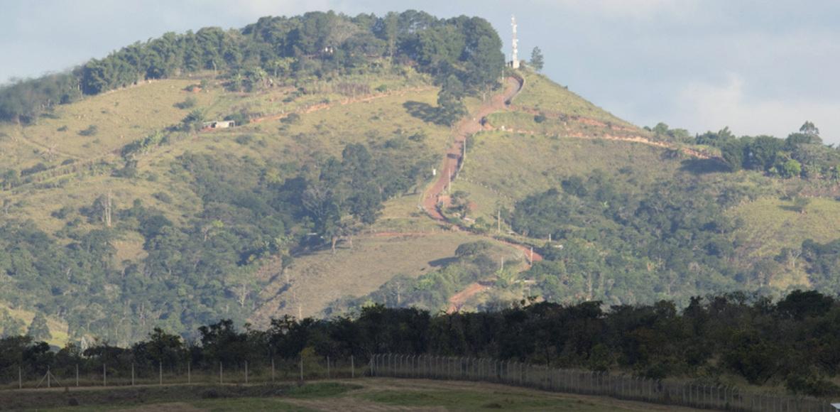 Galinha-d'Angola