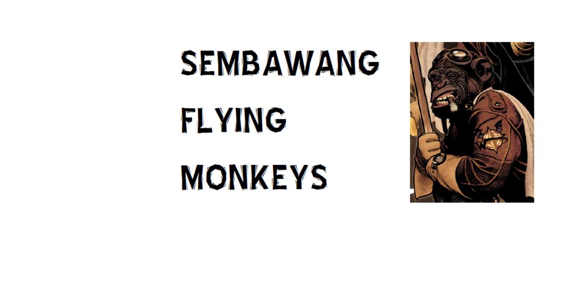 Sembawang Flying Monkeys Tri