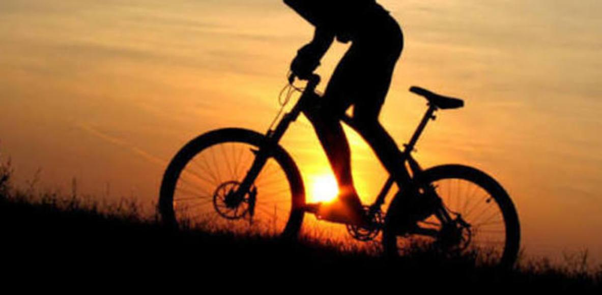 Role Bike